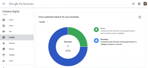 insights-report-google-my-business